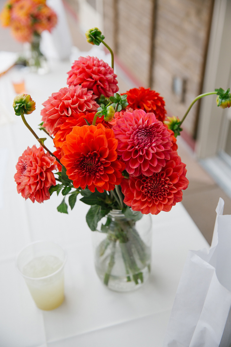 Red dahlias at wedding reception at Center for Urban Horticulture in Seattle, WA